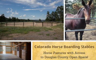Boarding Stable, Horse Pasture, Douglas County Open Space, Horse Trails in Colorado