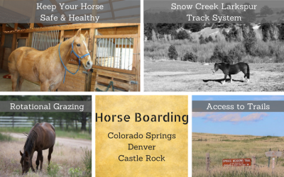 Horse Boarding Colorado Springs | Horse Boarding Denver
