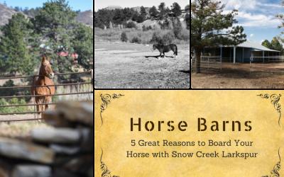 Horse Barns; Horse Barns Near Me