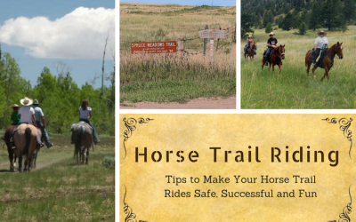 Horse Trail Riding at Snow Creek Ranch Larkspur