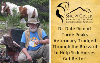 Dr. Rice Helps Sick Horses at Terolyn Horse Rescue